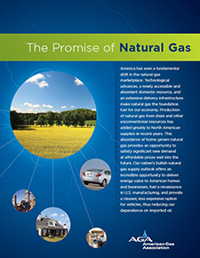 Promise Cover 225x290 Natural Gas: Its Promise for the Next Decade and Beyond